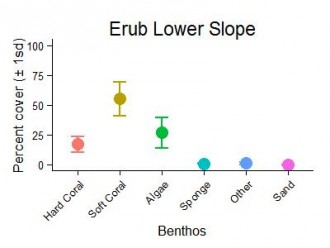 Erub Reef Lower Slope Benthic Group Graph