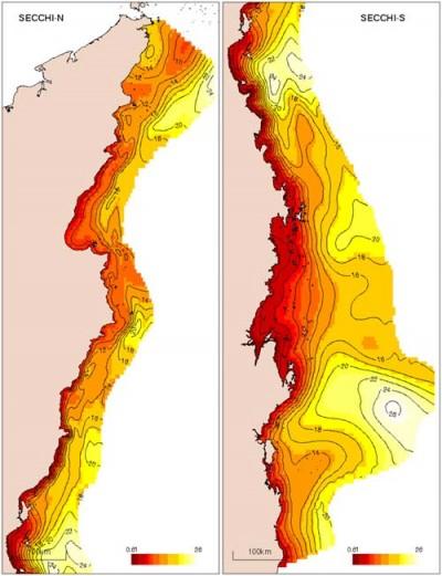 Distribution of Secchi depth