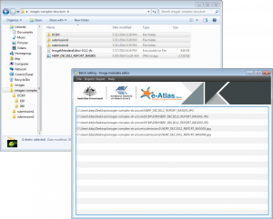 Complex folder structure loaded in the Image Metadata Editor