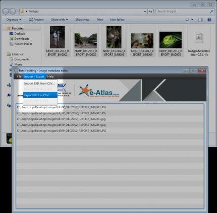 Exporting images metadata using the Image Metadata Editor