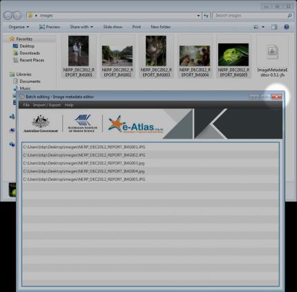 Closing the Image Metadata Editor