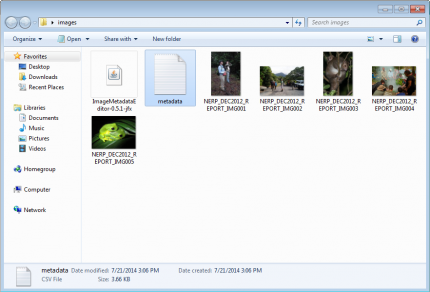 Metadata CSV file