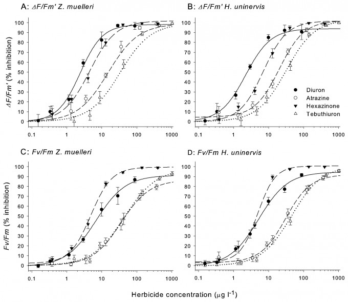 Concentration-response curves for two seagrasses species and four herbicides.