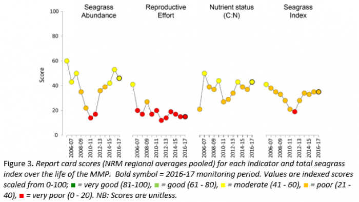 Report card scores for each indicator and total seagrass