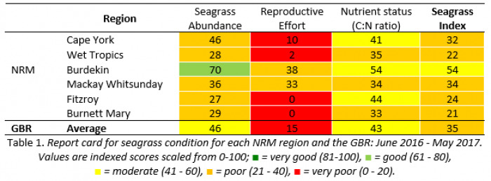 Report card for seagrass condition 2016-2017