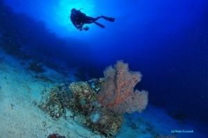 Exploring the deep blue