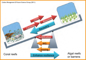 Conceptual resilience model