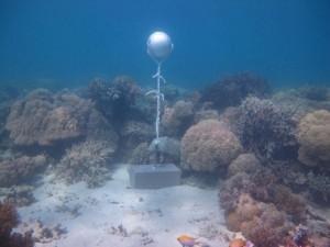 Woiz Reef - Torres Strait Temperature Logger (Flat Logger: WOIZFL1)