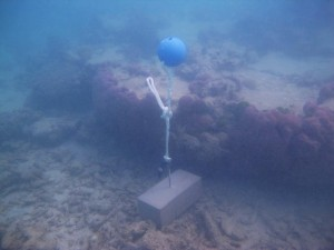 Dugong Island - Torres Strait Temperature Logger (Slope Logger: DUGONGSL1)