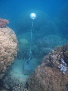 Woiz Reef - Torres Strait Temperature Logger (Slope Logger: WOIZSL1)