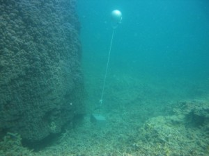 Iama Island - Yam - Torres Strait Temperature Logger (Slope Logger: YAMSL1)