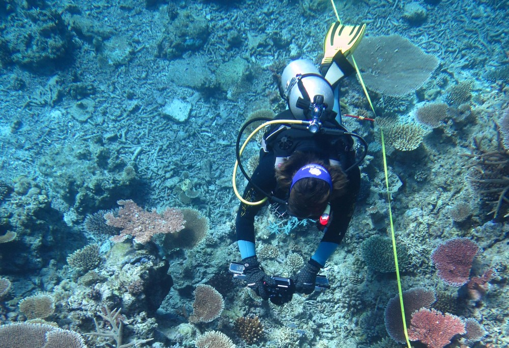 Diver collecting imagery along a transect on a fixed site survey.