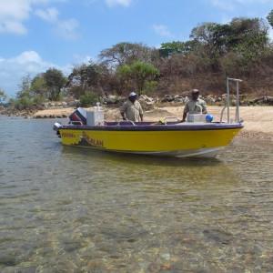 Moa Island (Kubin) - Rangers