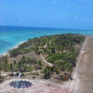 Coconut Island - Landing