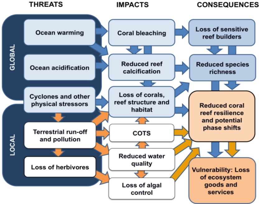 the environmental threats to coral reefs This section focus on the coral reef ecosystem to explore factors influencing  ecological  healthy coral reefs supply food and other resources for millions of  people  threats to coral reef sustainability coral reefs are under threat  worldwide.
