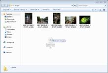 Where to copy the Image Metadata Editor