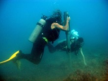 Coral coring