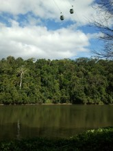 View of the cable cars crossing the Barron River near Kuranda