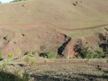 Degraded landscapes could be restored in Far North Queensland