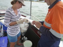 Water quality sampling