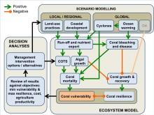 Ecosystem conceptual model