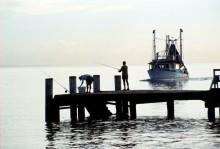 Trawler approaching jetty