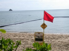 Stinger-resistant swimming enclosures only protect against box jellyfish. Beaches must still be closed when much smaller Irukandji are present.