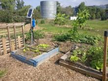 JCU Community garden auto-irrigation system